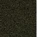 Tropical Spirulina Super Forte granulat 100 ml (rozvažované)